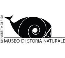 A museo storia naturale logo